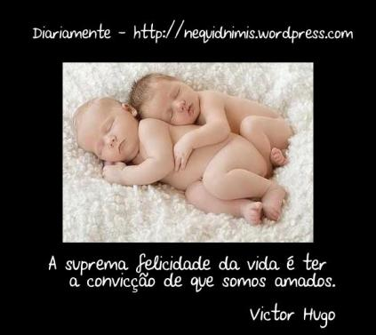 victor hugo amor