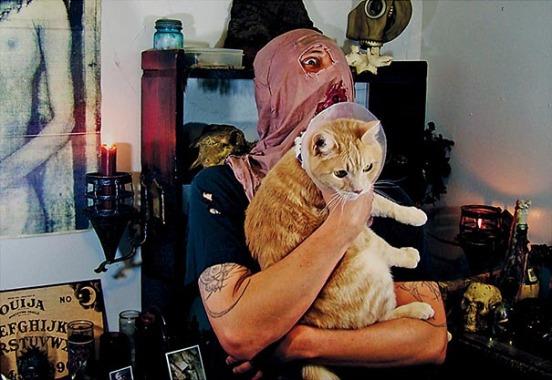 metal cats alexandra crockett 10