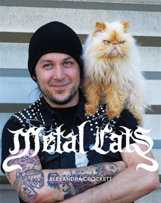 metal cats alexandra crockett 11